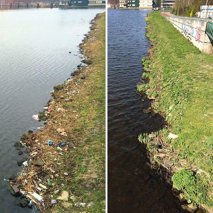 proyecto-recoger-basura-diariamente-pigswegetwhatpigsdeserve-holanda (19)