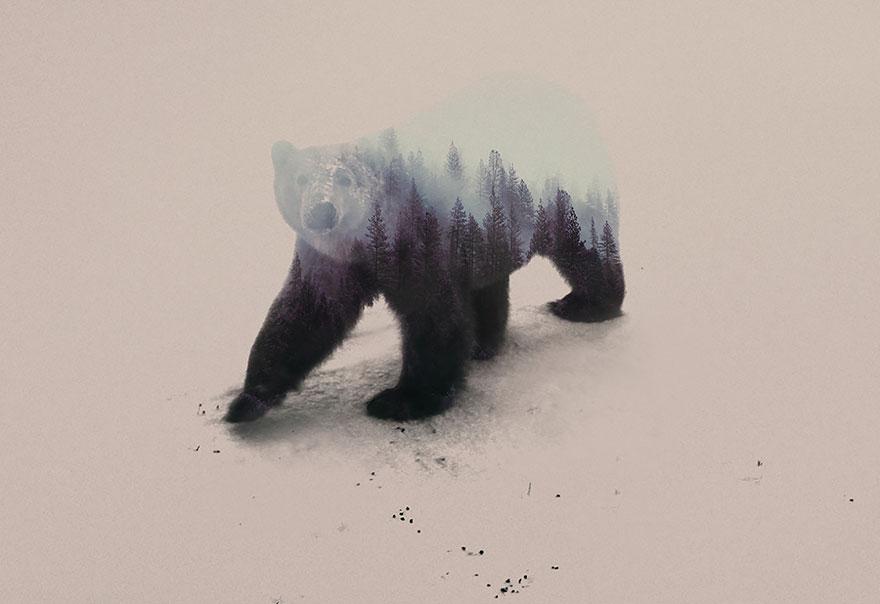 fotos-doble-exposicion-animales-andreas-lie-noruega (17)
