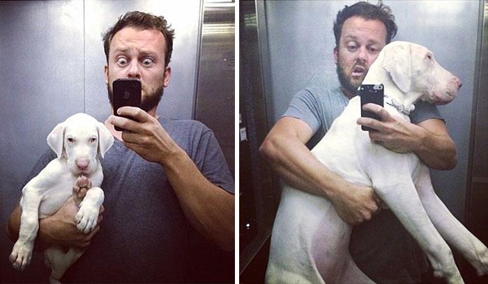 perro-rescatado-pegasus-creciendo-dave-meinert (3)