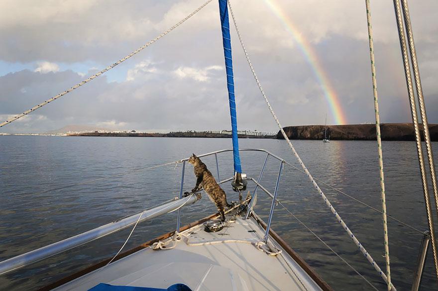 pareja-viajes-mundo-barco-gato-matt-jessica-johnson (26)