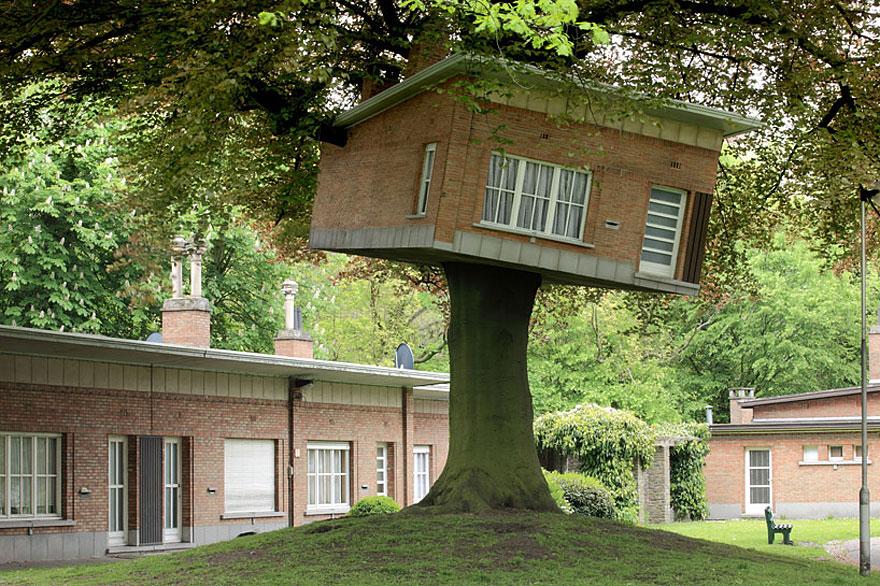 arquitectura-alrededor-arboles (4)