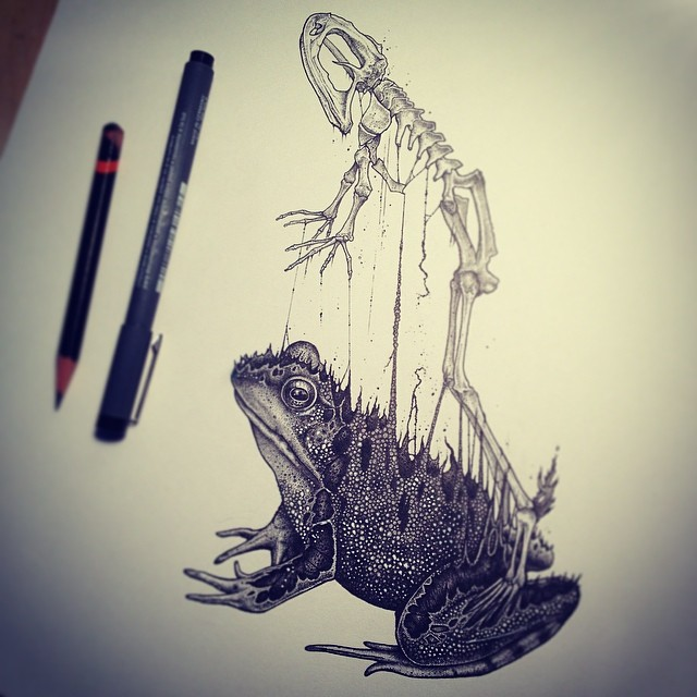dibujos-esqueletos-animales-paul-jackson (3)