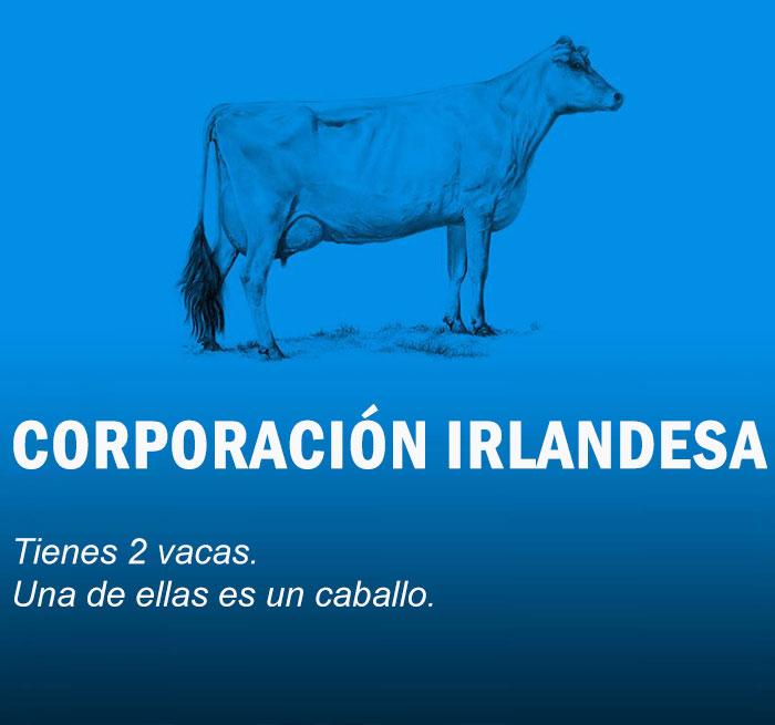 economia-explicada-vacas-10
