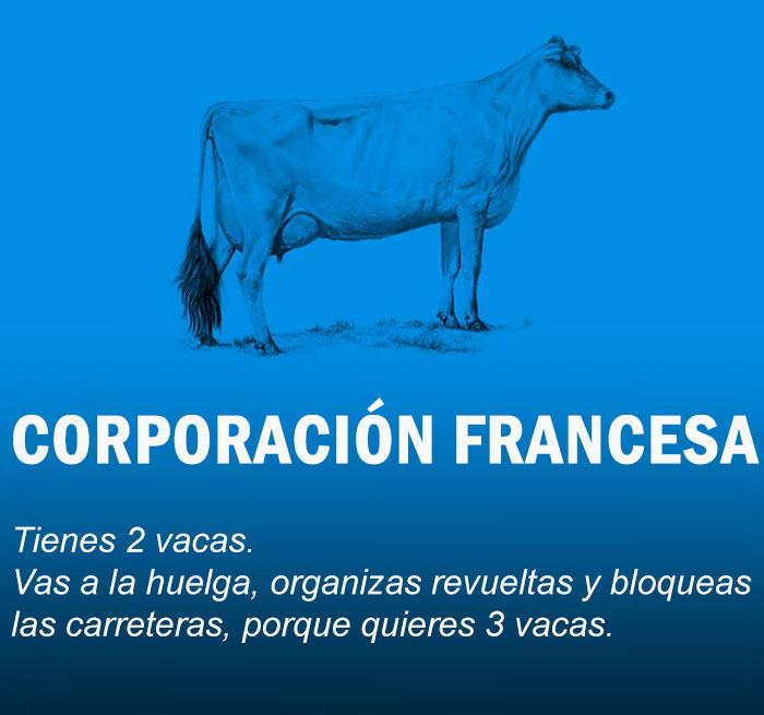 economia-explicada-vacas-8