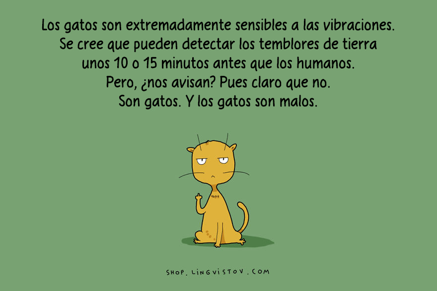 guia-ilustrada-verdades-gatos-14