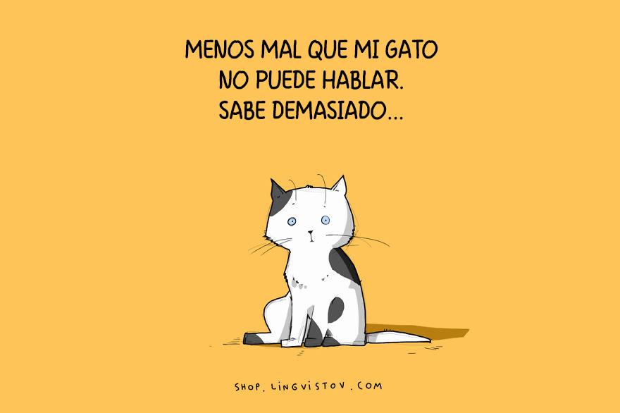 guia-ilustrada-verdades-gatos-3