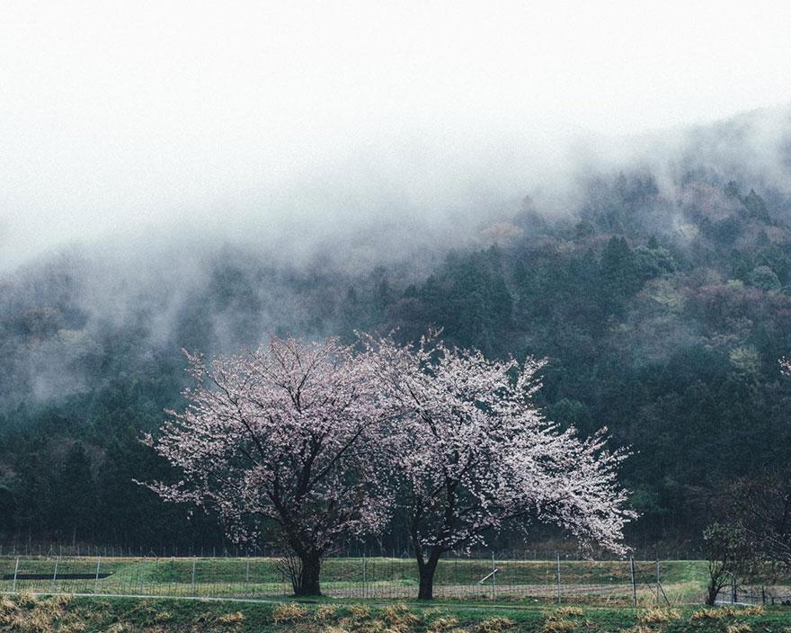 fotografia-vida-cotidiana-japon-takashi-yasui (13)