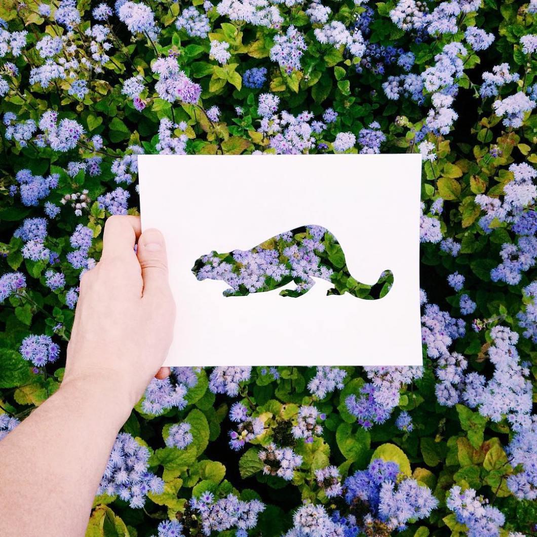 siluetas-animales-paisajes-naturales-nikolai-tolsty (11)