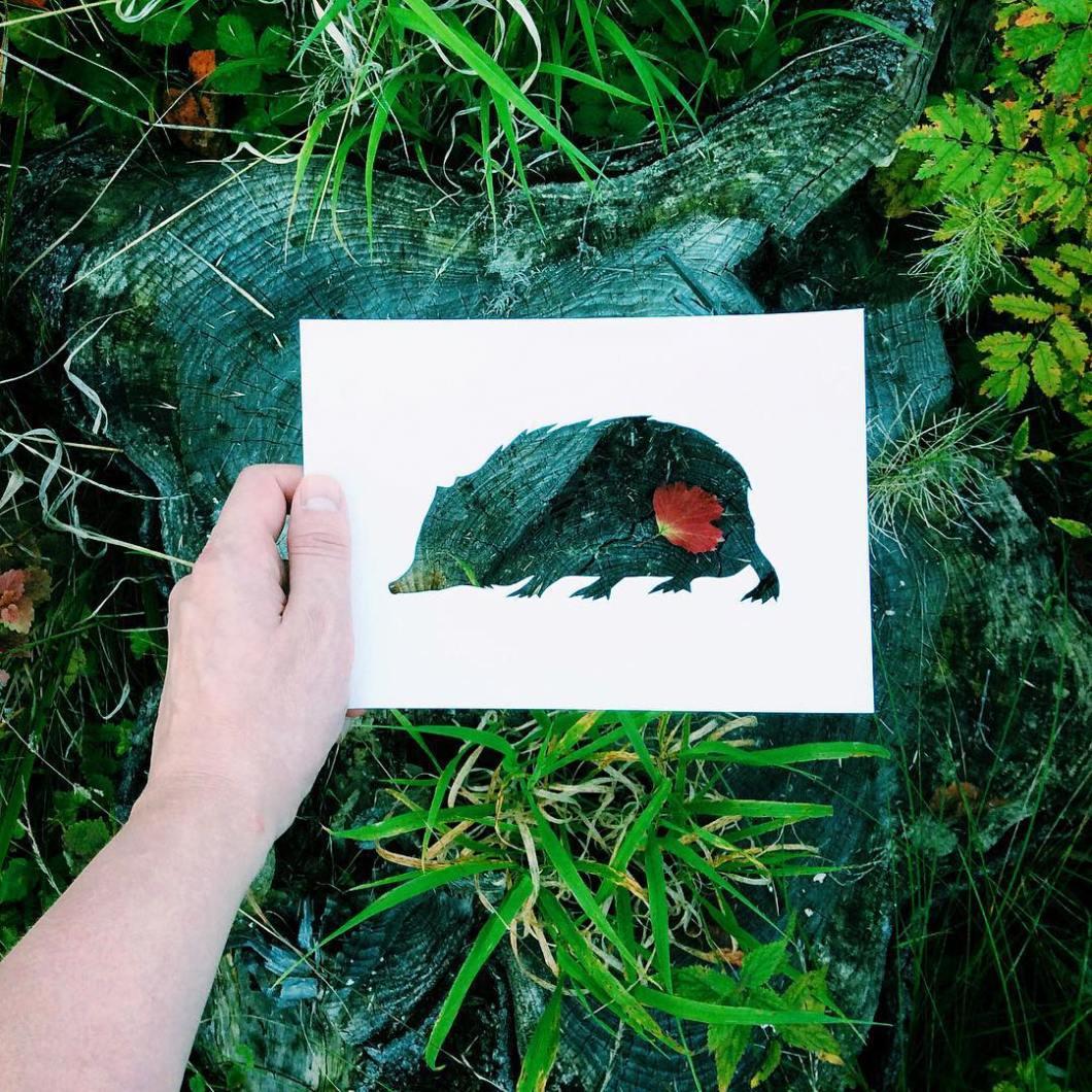 siluetas-animales-paisajes-naturales-nikolai-tolsty (6)