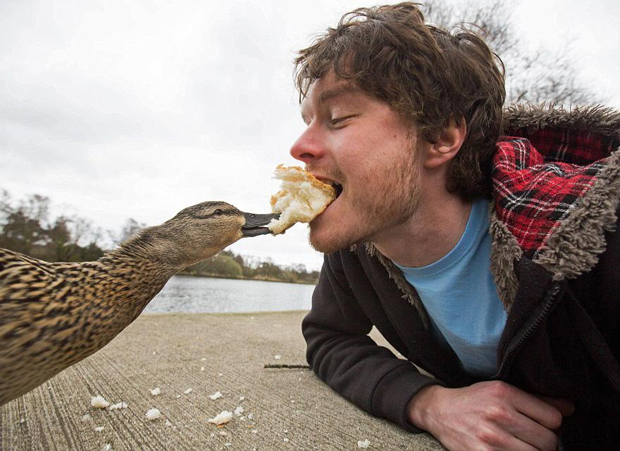 experto-selfies-animales-allan-dixon (3)