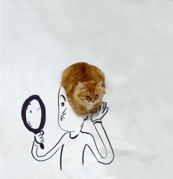 meme-foto-gato-dibujos-divertidos (1)