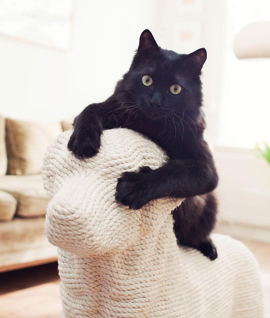 rascador-gatos-forma-perro-erik-stehmann (4)