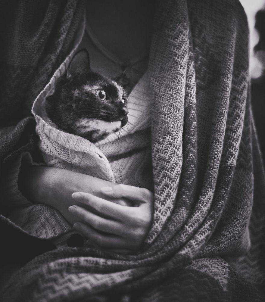 fotos-gato-estaciones (15)