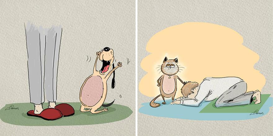 ilustraciones-diferencias-gatos-perros-bird-born (1)