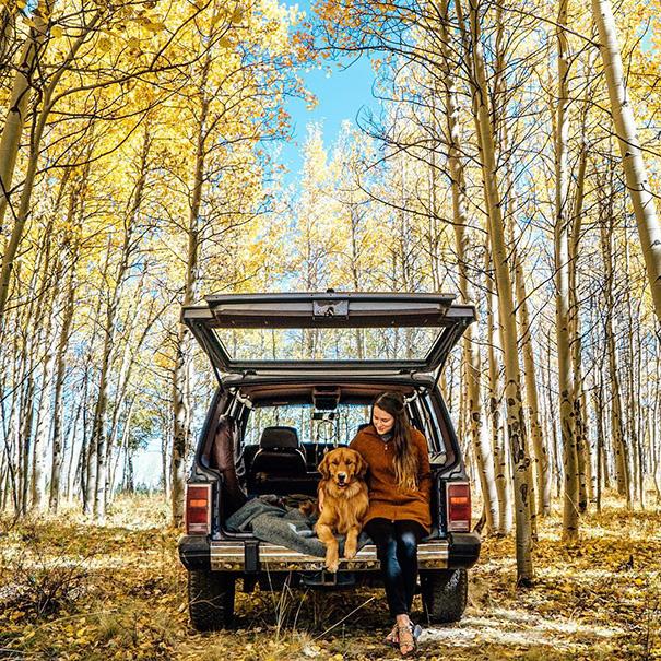 perro-aspen-viajes-aventura-hunter-lawrence (12)
