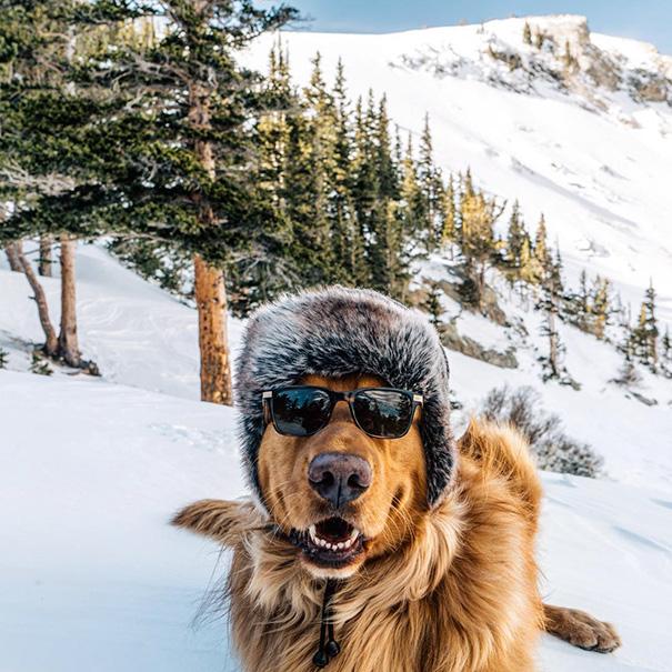 perro-aspen-viajes-aventura-hunter-lawrence (2)