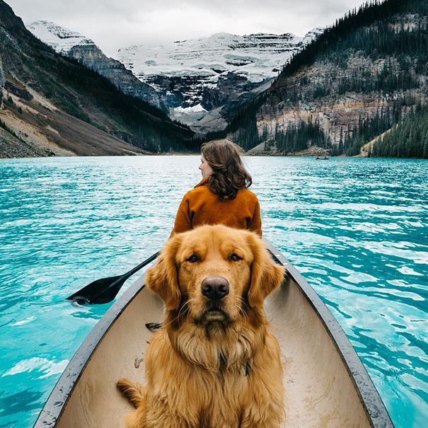 perro-aspen-viajes-aventura-hunter-lawrence (9)