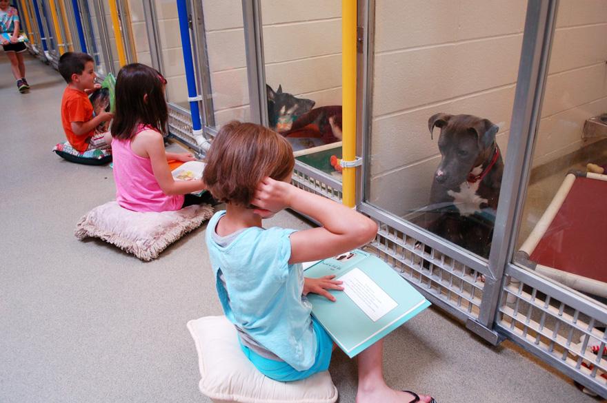 ninos-leyendo-perros-refugio-missouri (1)