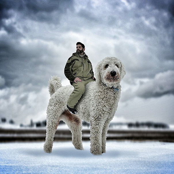 aventuras-juji-perro-gigante-photoshop-christopher-cline (2)