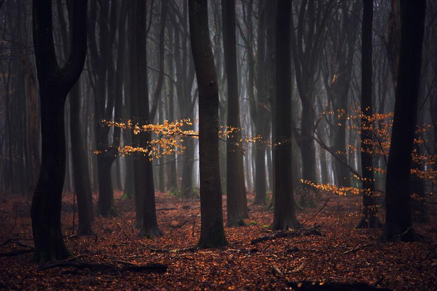 fotos-paisajes-holanda-albert-dros (10)