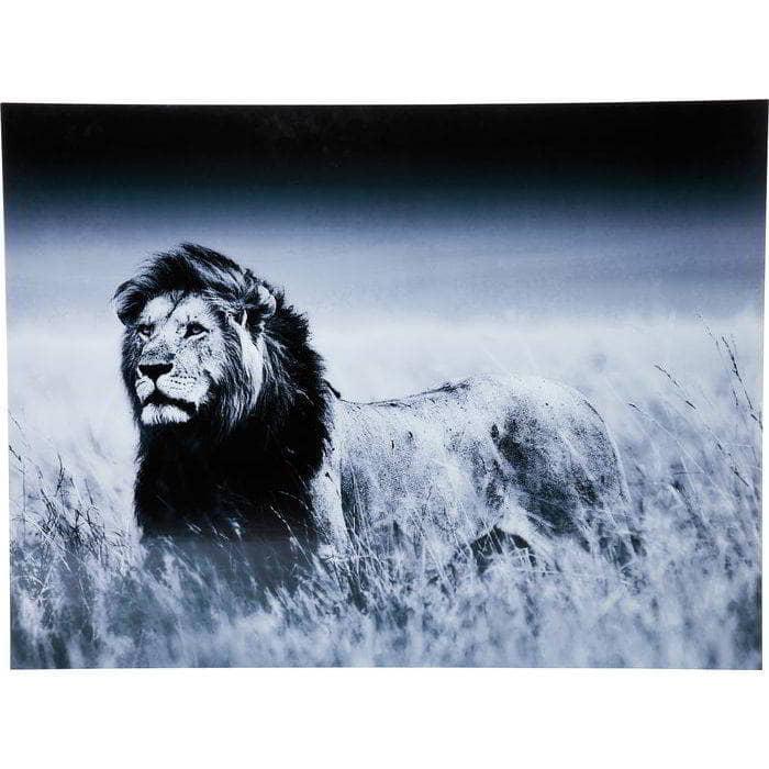 cuadro_black_lion