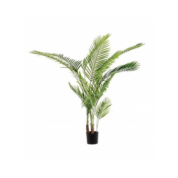 planta-plama-borgia-conti