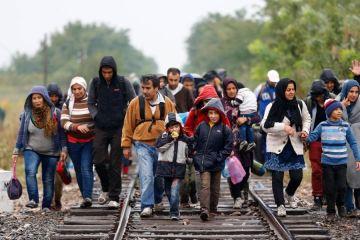 Refugiados Sirios llegarán a la Argentina