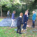 Beech Shelter Building
