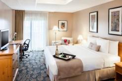 Deluxe King _ Regency Hotel