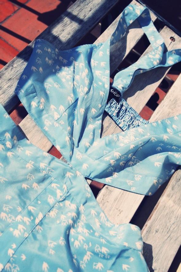 robe dress topshop birds blue bleu summer picnic 2012_effected-002_effected