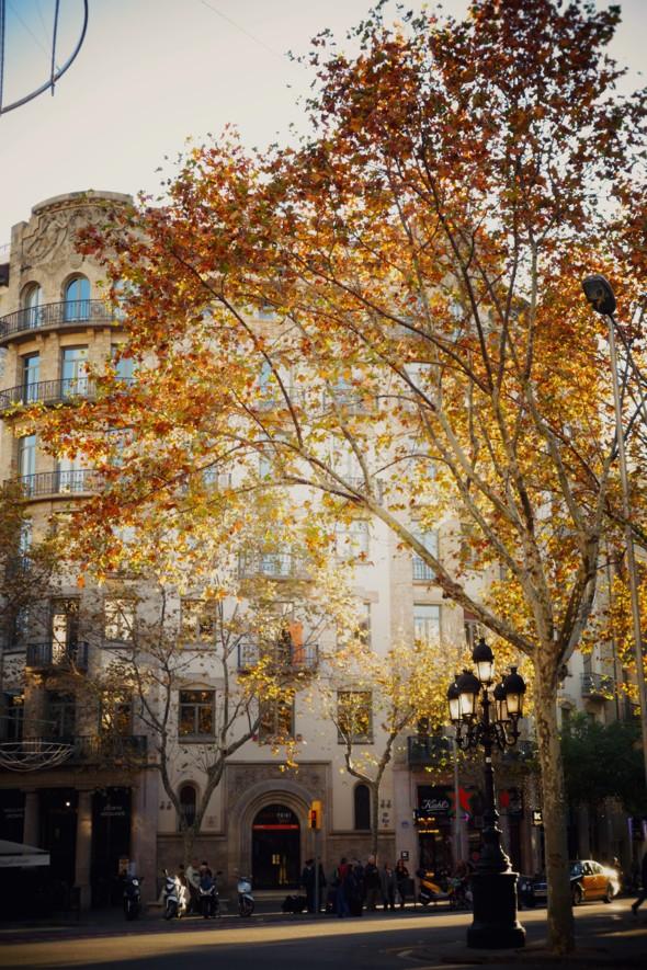 Barcelona streets_effected