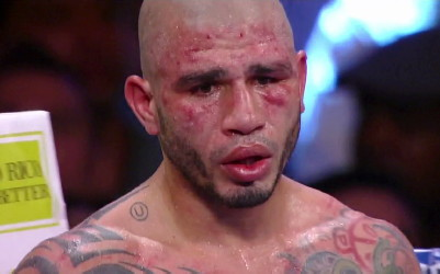 Cotto Trout Cotto vs. Trout  miguel cotto