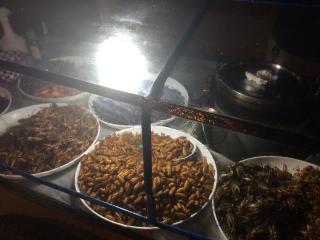 昆虫食(さなぎ)