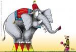 Digital Illustration of an Elephant & Cody