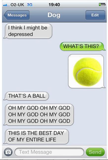 dog text 2