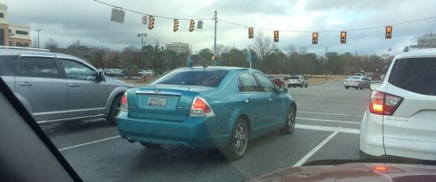Dolphins car