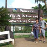 All About Crocodiles At Palawan Wildlife Rescue and Conservation Center, Philippines