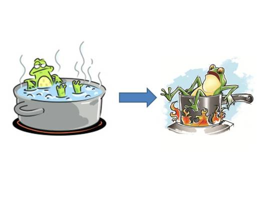Frog in boiling water
