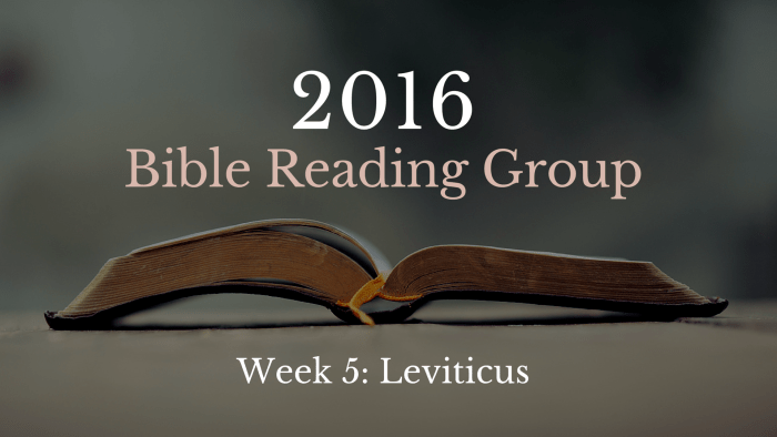Bible Reading Group 5