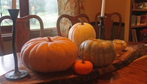 Fall Decorations Dining room