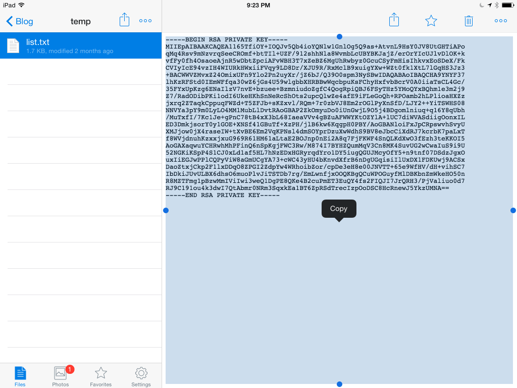 Copy SSH key to the iPad's clipboard