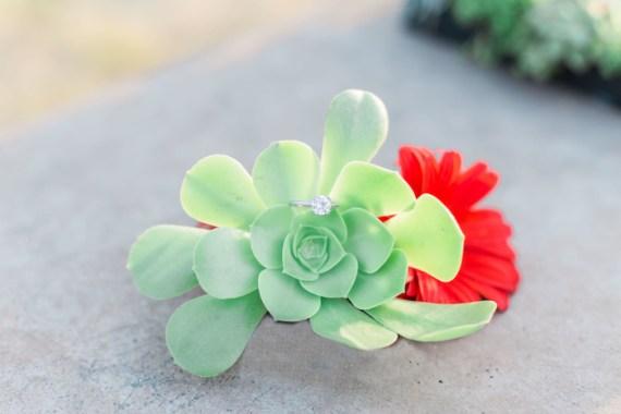 Colorful-Au-Natural-Bridal-Shower-Ring-Display