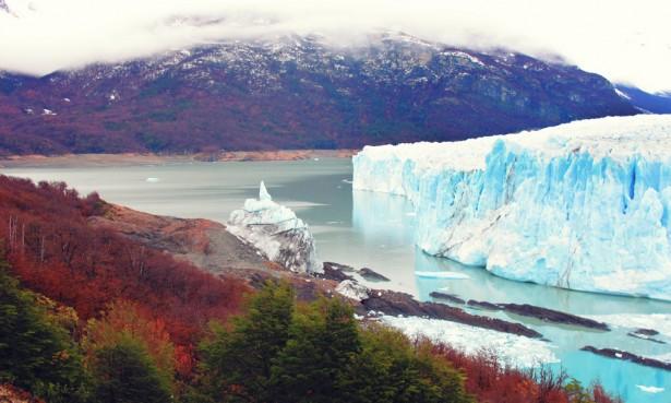 Autumn trees at Perito Moreno glacier