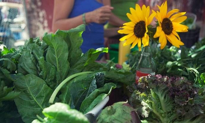 Veg and sunflower at Sayulita organic market