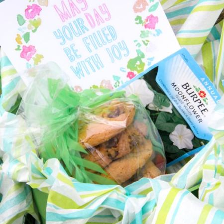 May Day Cookie Basket-20