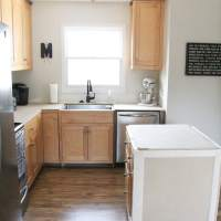 Only read this post if you approve of painting wood cabinets!