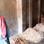 Worker at Ginger Merchants