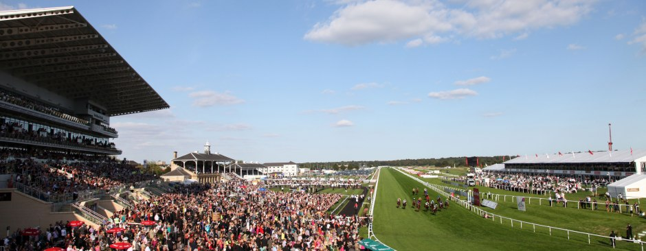 racecourse-information