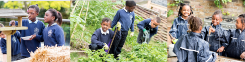 Outdoor Learning and Gardening
