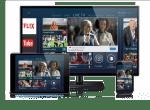 Netgem to show 'multiscreen like you've never seen before'
